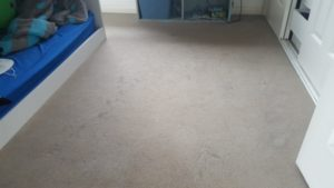 Dirty Bedroom Carpet In Gwynneville - before cleaning by Jason, a ChemDry-trained carpet cleaner 1