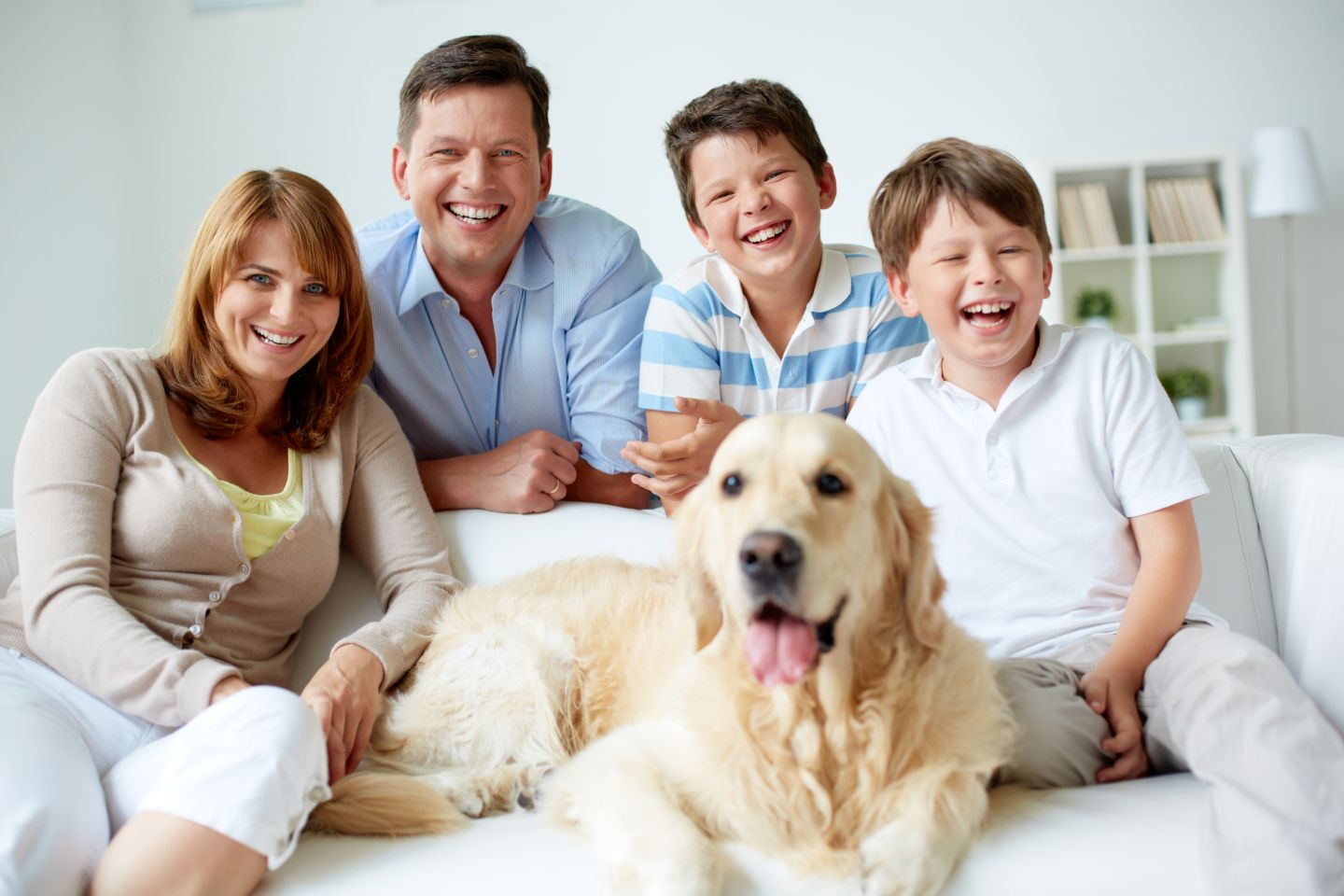 clean lounges of pet fur, odours and stains - wollongong and south coast
