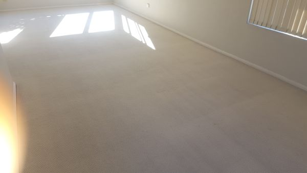 How To Clean Light Coloured Carpets - AFTER cleaning by Chem-Dry Excellence