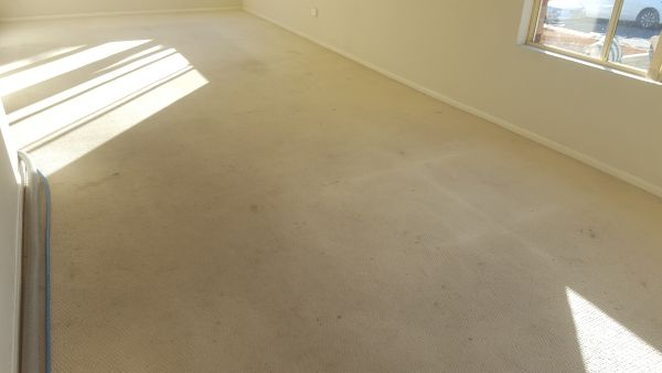How To Clean Light Coloured Carpets - BEFORE cleaning by Chem-Dry Excellence
