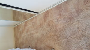 blood stained carpet at woonona comes up clean after chem dry cleaning