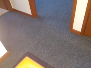 carpet in Corrimal - AFTER Chem-Dry Excellence cleaning